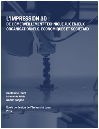 Rapport_Impression 3D